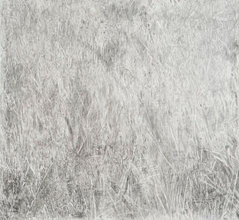 """Grass,"" graphite on paper, 2014"