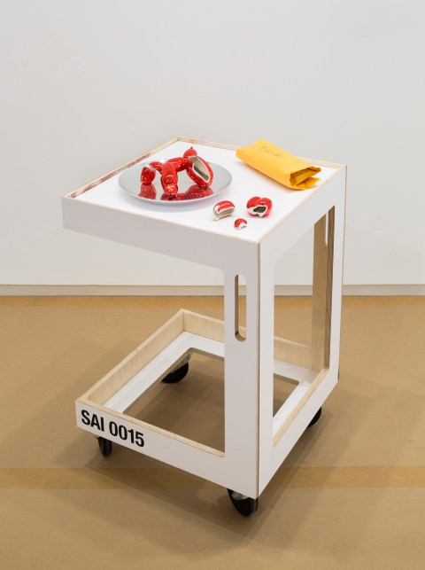 No Longer Art: Salvage Art Institute. Installation view, Neubauer Collegium for Culture and Society, 2015