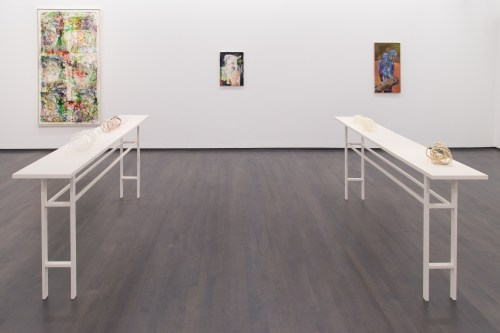 """James Krone. Installation view of """"An Ornithology for Birds,"""" 2016."""