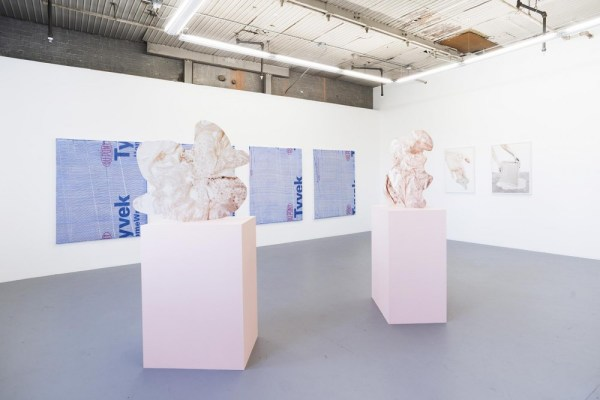 """Installation view of """"What Birds Can See"""" at Document Space, Summer 2016"""