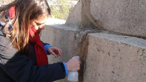 "Amanda Trienens at work on ""Concrete Traffic,"" November 2014."