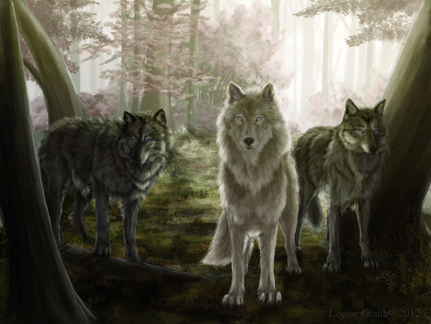 Animal Love Wallpaper Wolf Forest By Louise Goalby On Newgrounds