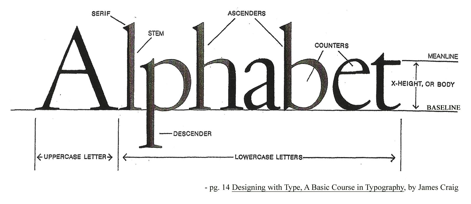 Anatomy of Type
