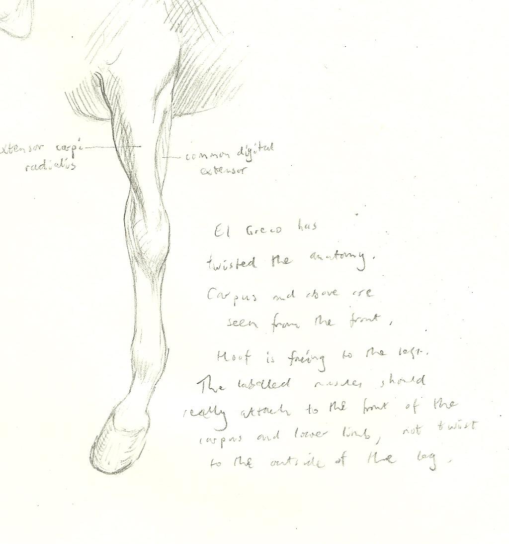 My Diagram El Greco Horse 2