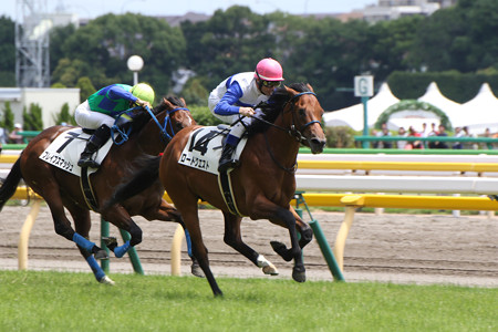 ロードクエスト レース_1(15/06/07・新馬戦)