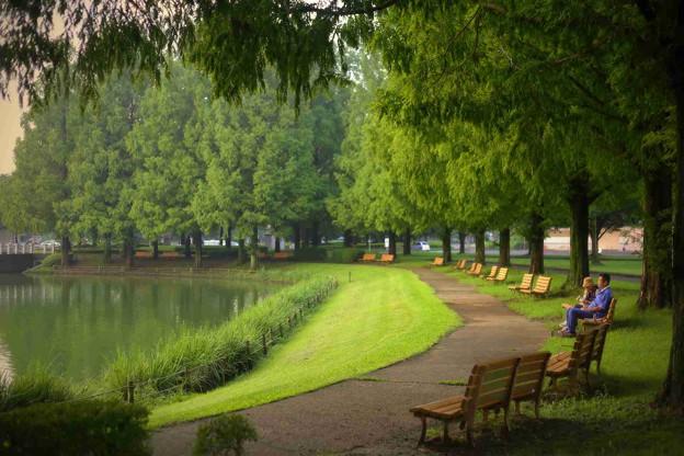 川越水上公園の池周りのベンチ