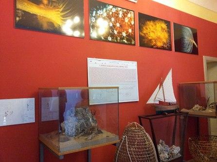 Coral Museum, Alghero (Sardegna)