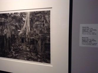"Kenro Izu, ""Angkor #71, Ta Prohm, Cambodia,"" 1994"