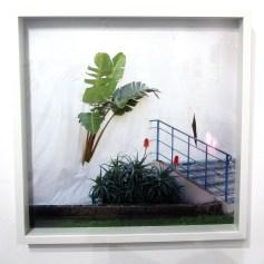 Kate Shapiro/Tree Thru Plastic. LAST Projects. Photo Credit Patrick Quinn