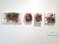 Terry Arena. Not Just Bees. Carnegie Art Museum Studio Gallery. Photo Credit Kristine Schomaker.