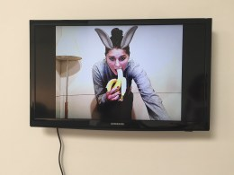 bunny banana 2009 webcam video 1 min 9 secs. Petra Cortright. Cam Worls. UTA Artist Space. Photo Courtesy Shana Nys Dambrot