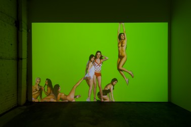 mind candy pfaffs_ 2015 digital video 2 hours. Petra Cortright. Cam Worls. UTA Artist Space. Photo Courtesy UTA