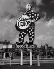 Diane Cockerill, Circus Liquor; Image courtesy of the artist