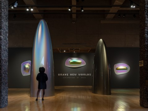 Gisela Colon. Brave New Worlds, Palm Springs Art Museum; Image courtesy of the gallery, Photo credit Lance Gerber
