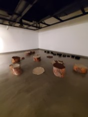 Hilary Norcliffe, Stumps, St. Broxville Wood: Into the Thicket, Kellogg University Art Gallery; Photo credit Sydney Walters