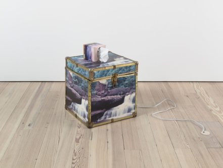 Escape Attempts. Photo Courtesy of Shulamit Nazarian. Virginia Overton, Untitled (Waterfall), 2016, Trunk with decal, tissue box, and white noise machine, 21 x 16 x 16 inches.
