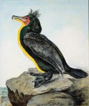 Larry Rivers. Double Crested Cormorant. Birds of America: Explorations of Audubon: The Paintings of Larry Rivers and Others. Photo Courtesy of 101/Exhibit.