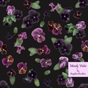 Moody Violas on charcoal gray