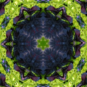 This kaleidoscope design looks a little dangerous to me. Does it look dangerous to you too?