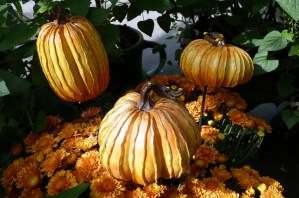 Fall Garden Decor Tips