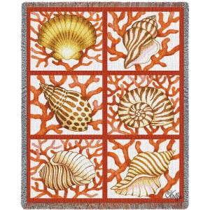 """Shells And Coral 