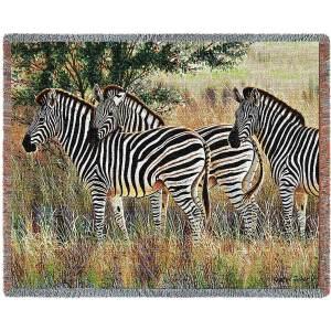 Three Zebra Group   Woven Throw   70 x 53