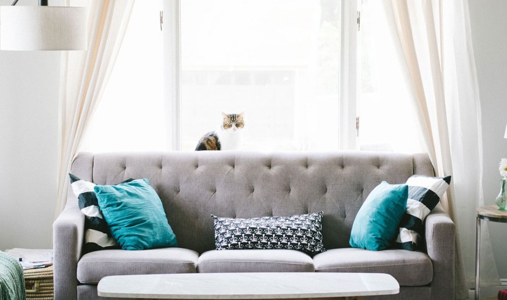 Small Space Decor Tips: Curtains & Windows