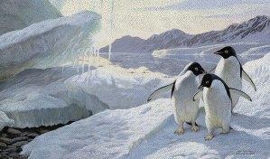Penguin Decor: For the Love of Penguins