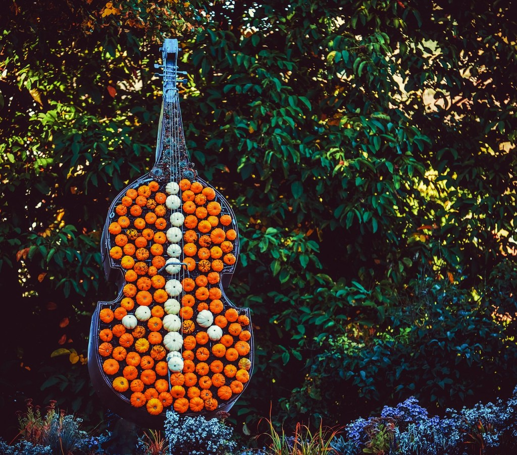 The Bass Violin Made of Pumpkins