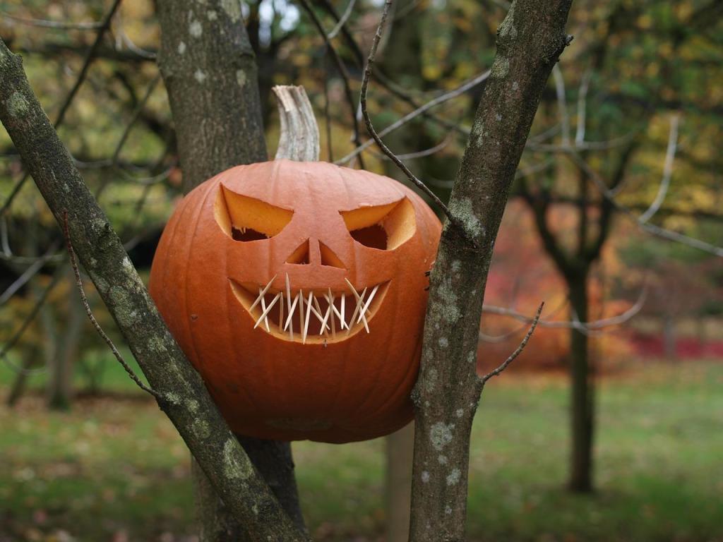 Creative Pumpkin Carving Ideas | Stitched Up Pumpkin