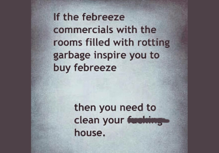 If the Febreeze commercials with the rooms filled with rotting garbage inspire you to buy Febreeze, then you need to clean your (bleeped) house!