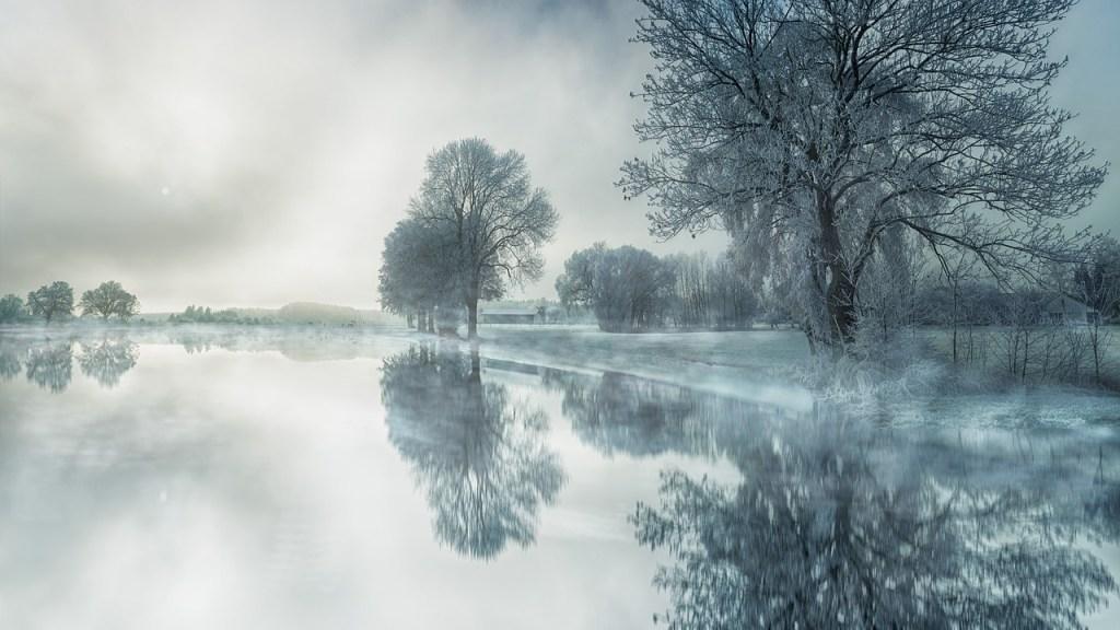 Foggy Winter Morning Winter Scene