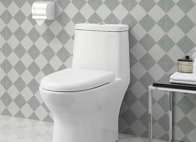 Swiss Madison Dual-Flush Elongated One-Piece Toilet