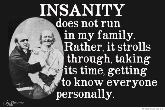 Memes About Family |  Insanity does not run in my family  Rather, it strolls through, taking its time, getting to know everyone personally.