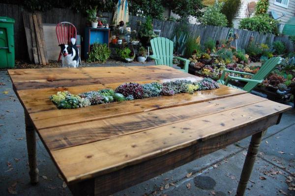 DIY Succulent Garden Pallet Table