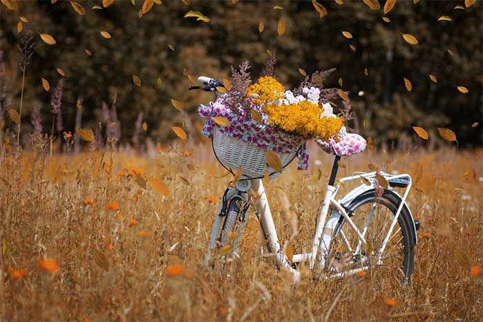 Fall Bicycle Flower Basket