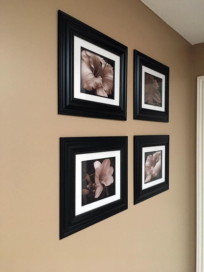 Framed Daylily Art Photos
