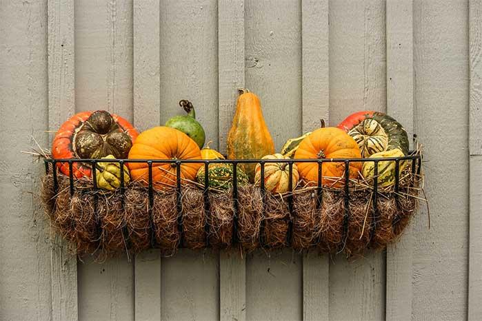 Hanging Basket of Gourds