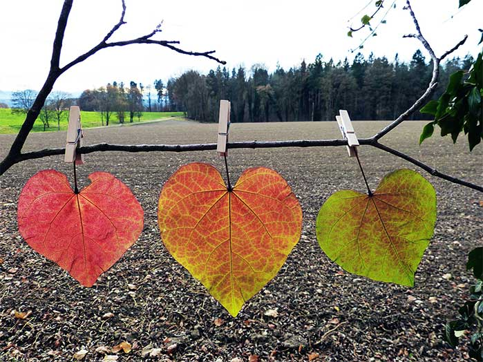 Paperclip Leaves DIY Fall Decor