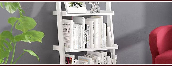 Unique Ladder Shelves