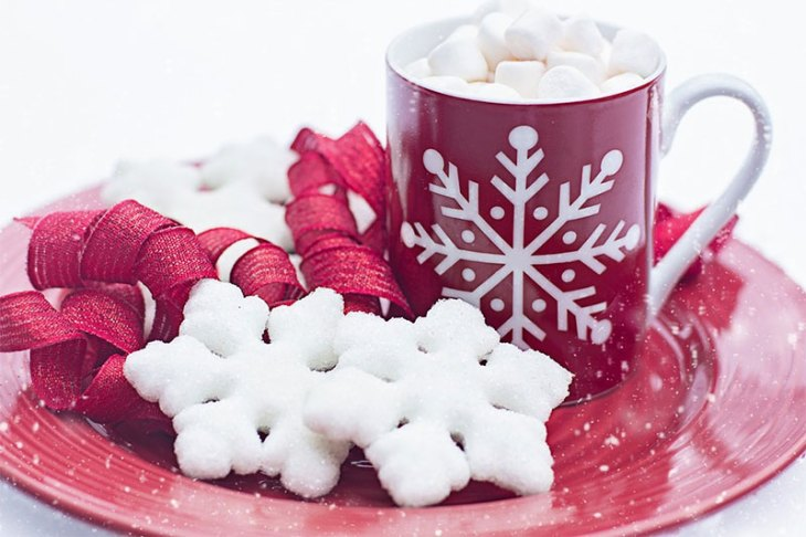 Christmas Cookies with a Cup of Hot Chocolate