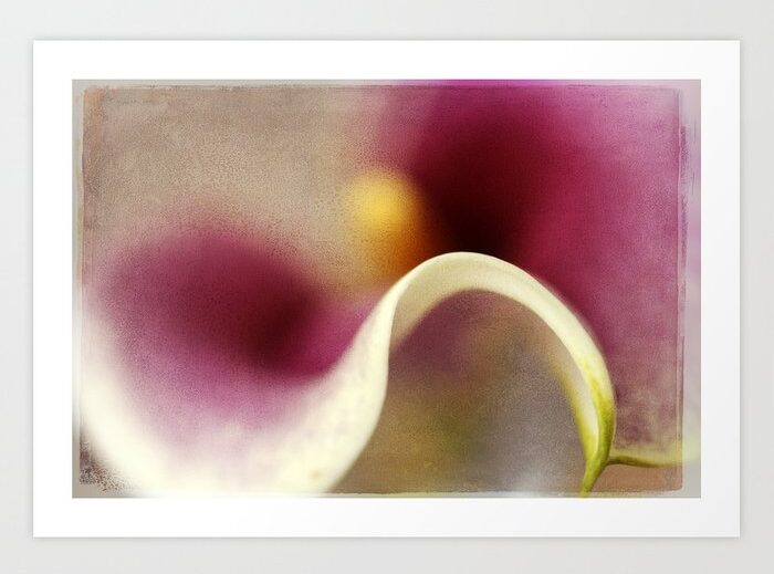 Calla Lily Abstract II Art Print