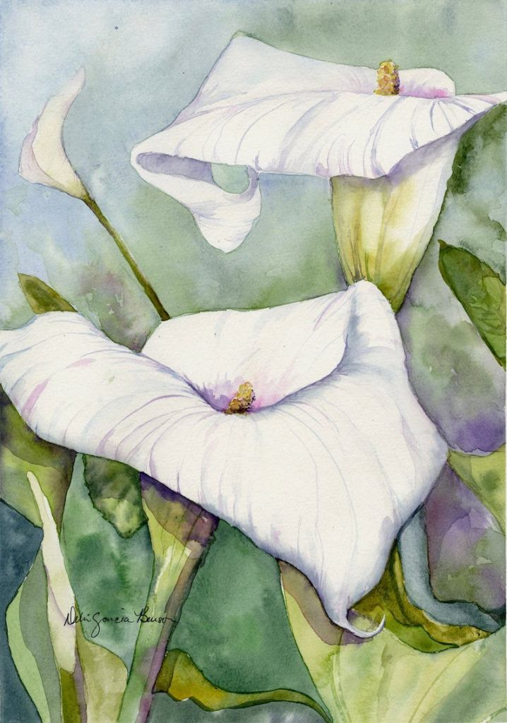 White Calla Lily Original Watercolor Painting by Debi Garcia-Benson