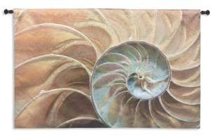 Nautilus | Coastal Art Tapestry | 3 x 50