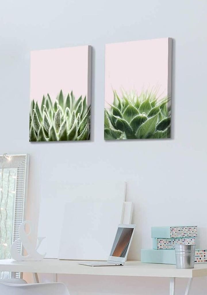 Pink Cactus Botanical Canvas Wall Art Set