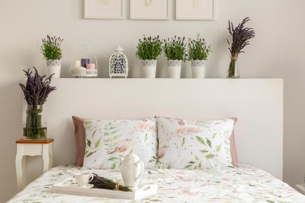 Air Purifying Lavender Plants in a Bedroom