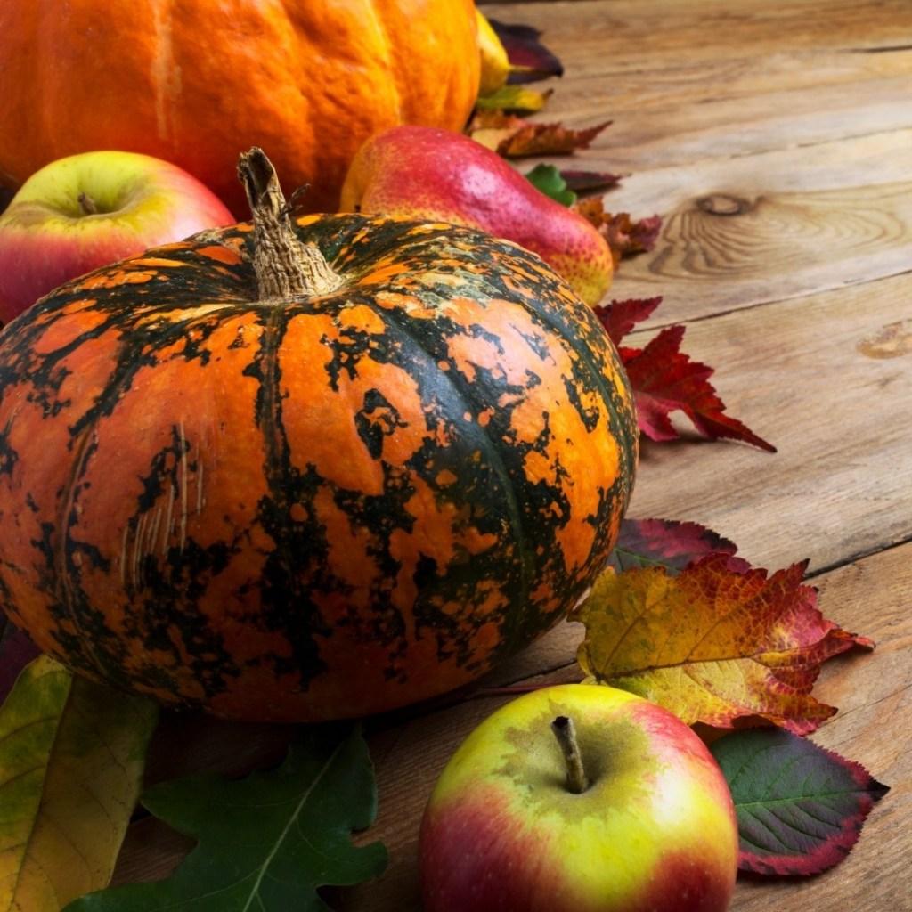 Fall Pumpkin and Apples Decor