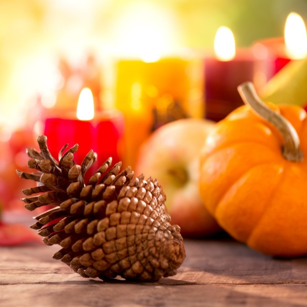 Pinecone and Pumpkins