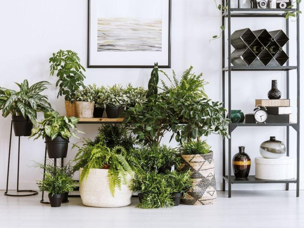 Home Decor Ideas & Tips - Art & Home Decor Blog