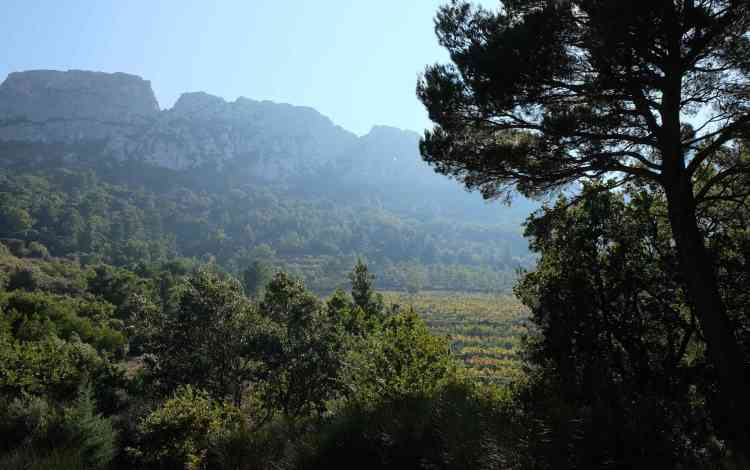 Hazy view of the Dentelles, tear drop hole to bottom right
